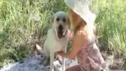 Porn zoo потаскушка перепихнулась с собакой в посадке зоофилия видеоролик